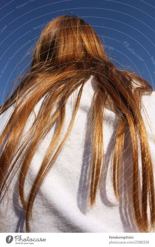 Red hair Hair and hairstyles 1 Human being Red-haired Long-haired Observe Dream Wait Exceptional Rebellious Happiness Serene Patient Loneliness Bizarre