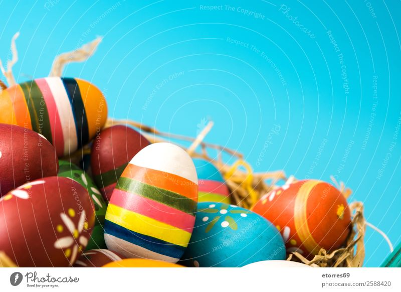 Easter eggs in a basket on blue background Egg Colour Vacation & Travel Feasts & Celebrations Public Holiday Background picture Guest Decoration Festive Well