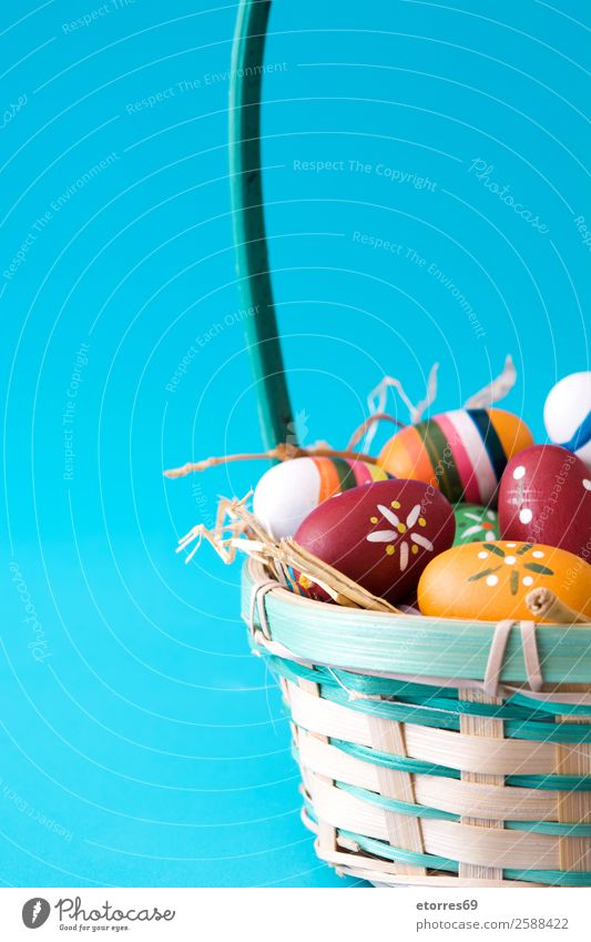 Easter eggs in a basket on blue background Vacation & Travel Colour Flower Background picture Wood Feasts & Celebrations Decoration Tradition Egg Public Holiday