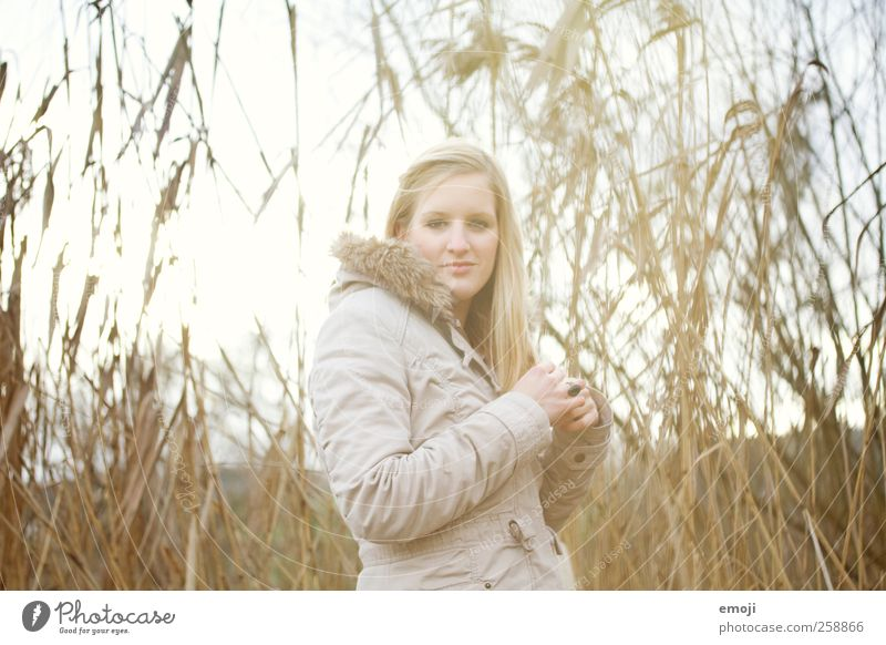 veneering Feminine Young woman Youth (Young adults) 1 Human being 18 - 30 years Adults Plant Meadow Lakeside Common Reed Colour photo Exterior shot Day Light