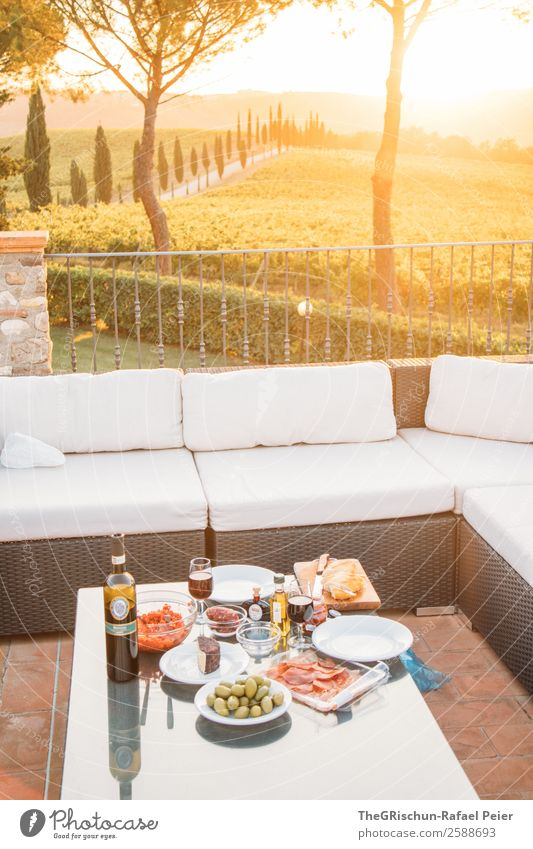 romantic dinner Nature Yellow Gold Green Italy Gourmet Olive Meat Wine Vine Sunset Eating To enjoy Sofa Exterior shot Cypress Tuscany Picnic Dinner Colour photo