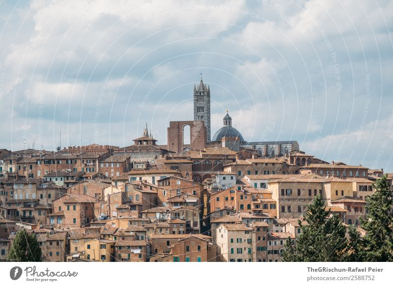 Siena Town Esthetic Italy Travel photography Small Town Tuscany Discover House (Residential Structure) Closed Build on Colour photo Exterior shot Deserted Day