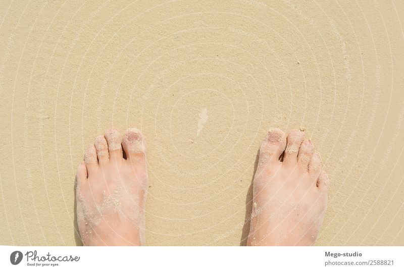 Close up view of feet on sea sand. Summer concept Lifestyle Beautiful Pedicure Relaxation Vacation & Travel Tourism Trip Sun Beach Ocean Island Waves