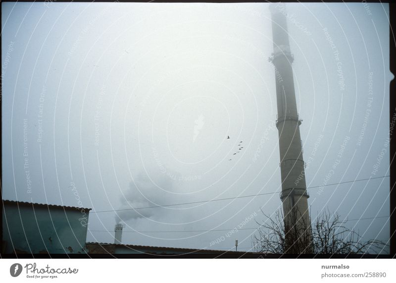 Tristes II Coal power station Industry Art Environment Sky Autumn Climate Climate change Weather Bad weather Fog Industrial plant Factory Tower Wall (barrier)