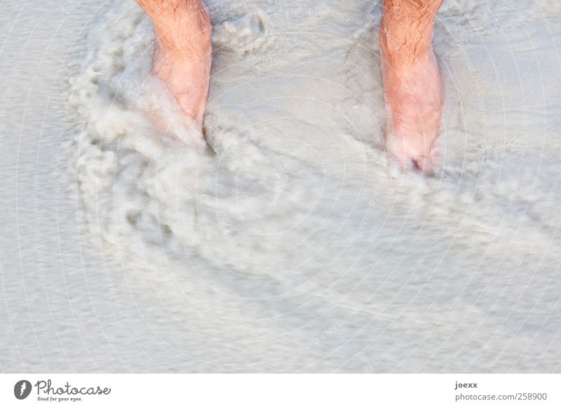 water level Vacation & Travel Summer vacation Beach Masculine Feet 1 Human being Water Stand Wet Brown Gray Sandy beach Current Flow Low tide Colour photo