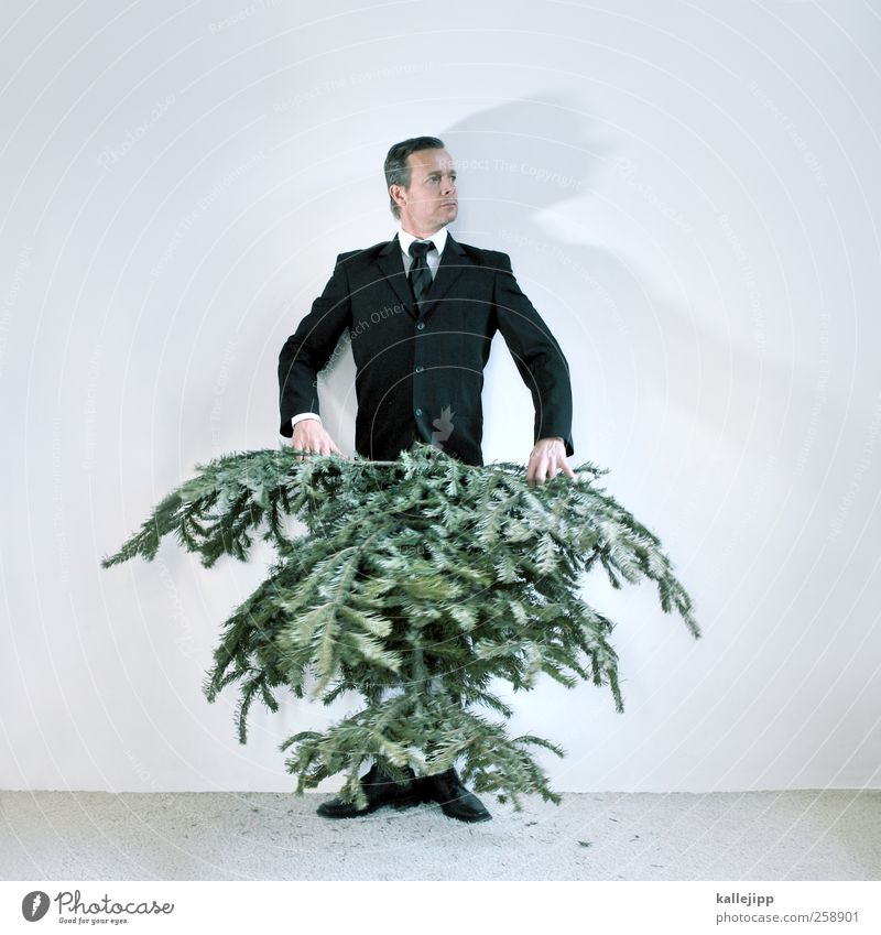 man carries tree now! Human being Masculine Man Adults 1 30 - 45 years Environment Nature Plant Tree Fashion Clothing Suit Tie Footwear Hair and hairstyles