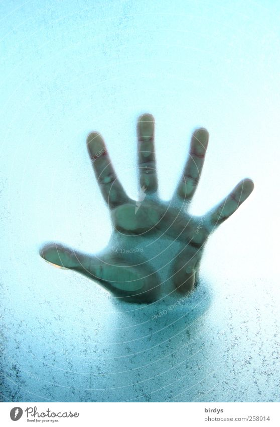 Cool five Child Hand Fingers 3 - 8 years Infancy Esthetic Bright Blue Curiosity Children`s hand 5 fingers Palm of the hand Level Pushing Window pane Frozen