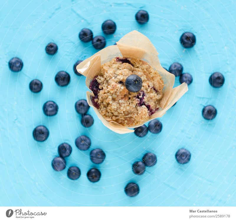 Muffins with blueberries on blue background. Fruit Bread Dessert Candy Nutrition Eating Breakfast To have a coffee Picnic Organic produce Vegetarian diet Diet