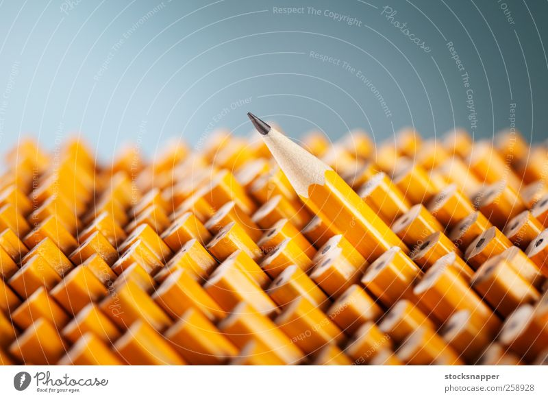 Standing out from the crowd 1 Yellow Wood Exceptional Uniqueness Individual Still Life Difference Conceptual design Best Single Pencil Sharp Ready