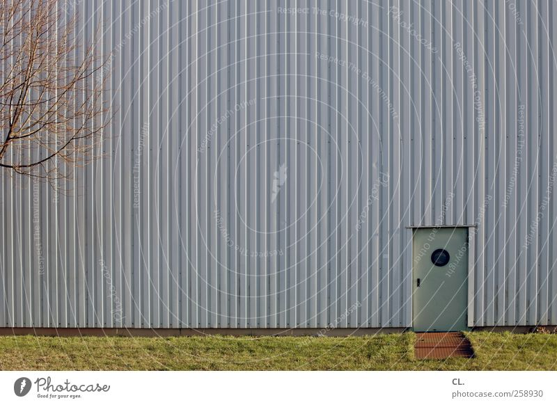 back door Tree Grass Deserted Industrial plant Factory Building Architecture Wall (barrier) Wall (building) Facade Door Small Curiosity Boredom Entrance