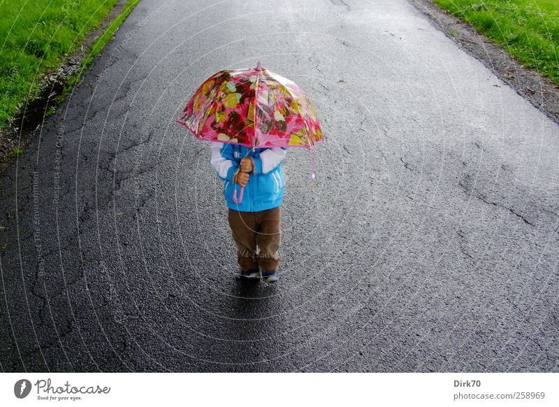 Human being Child Blue Green Summer Joy Boy (child) Gray Lanes & trails Rain Funny Infancy Going Pink Hiking Masculine