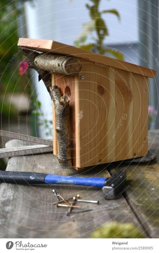 nesting box construction Kindergarten Bird Build Sustainability Hammer Nesting box Environmental protection Incubator Screw bird protection incubate