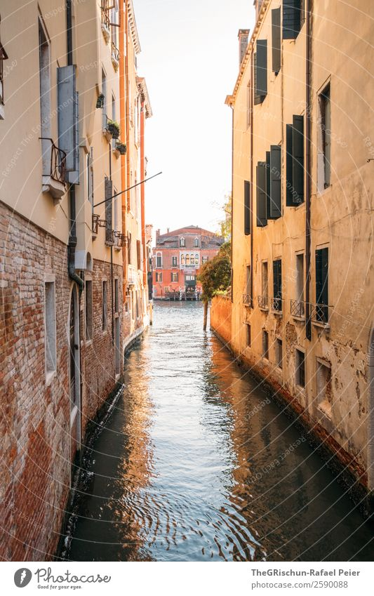 Venice Small Town Port City Tourist Attraction Brown Yellow Channel Alley Water Sea water Vacation & Travel Travel photography Discover Italy Colour photo