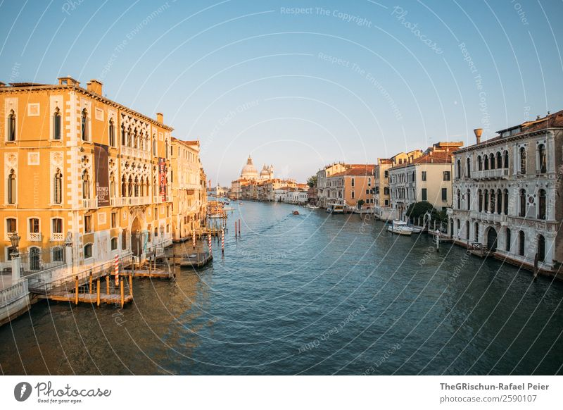 Venice Town Port City Tourist Attraction Blue Yellow Gold Black Canal Grande Italy Dome Manmade structures Sunlight Wooden stake Footbridge Water Watercraft