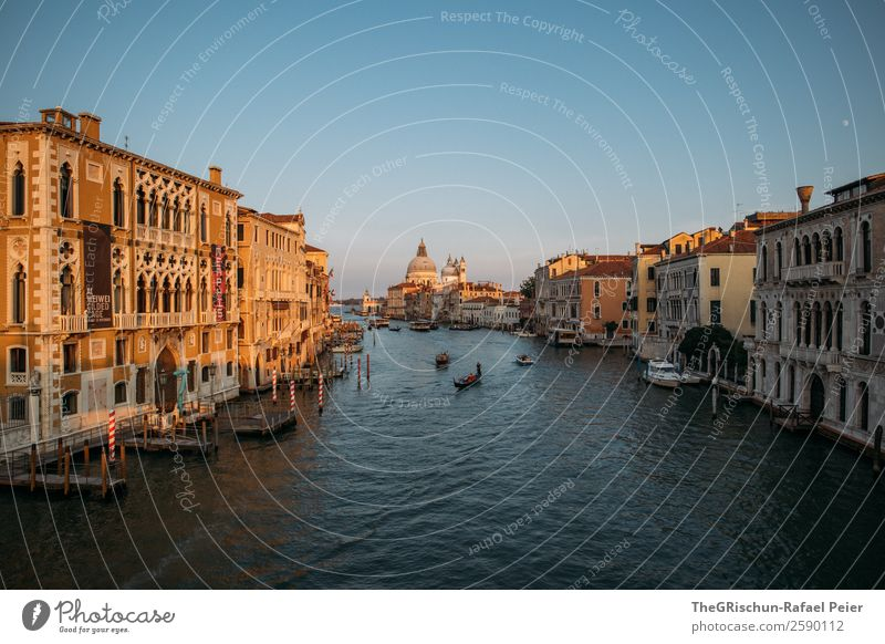 Venice Small Town Port City Tourist Attraction Blue Brown Yellow Gold Italy Canal Grande Watercraft House (Residential Structure) Dome Wooden stake Footbridge