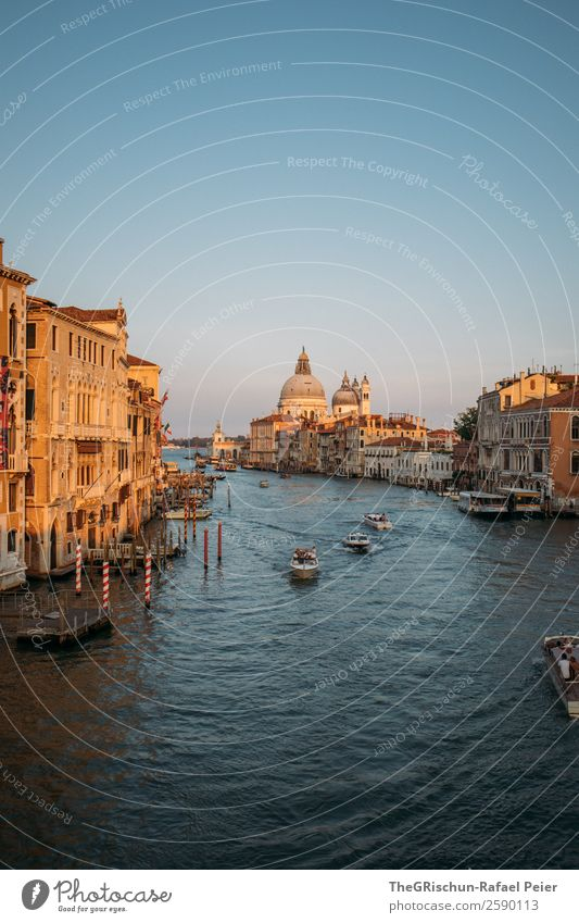 Venice Town Port City Blue Brown Gold Black White Canal Grande Italy Travel photography Discover City trip Watercraft Navigation Dome Moody Exterior shot