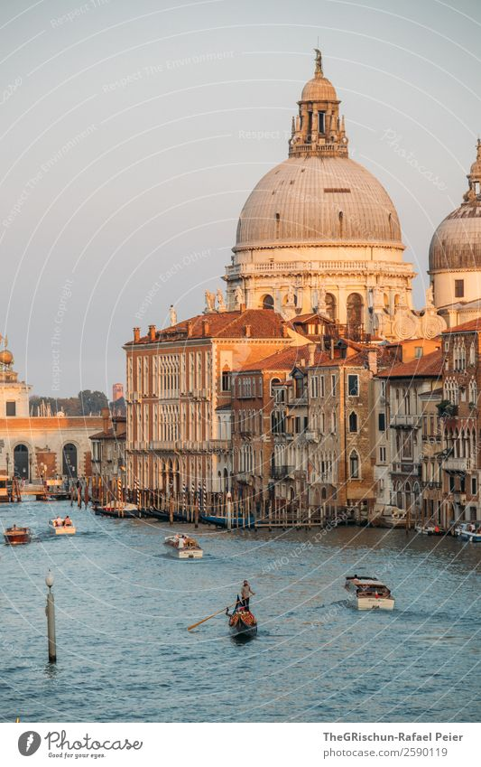 Venice Small Town Port City Downtown Dome Blue Brown Yellow Gold Impressive Canal Grande Gondolier House (Residential Structure) Travel photography Moody Italy