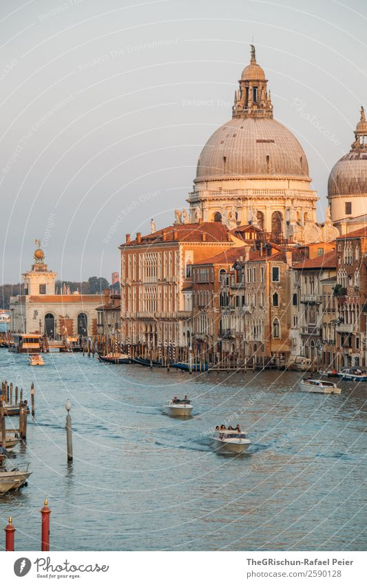 cathedral Small Town Port City Downtown Blue Brown Yellow Gold Venice Italy Canal Grande Watercraft Navigation Dome Impressive House (Residential Structure)