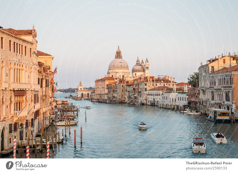Grand Canal Town Port City Downtown Blue Brown Yellow Gold Dome Venice Canal Grande Italy Water Channel Watercraft Boating trip Wooden stake Colour photo