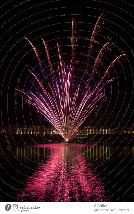 Fireworks in the lake Event Shows Air Water Night sky Lake Hollersee Gigantic Violet Pink Black Firecracker firework Colour photo Exterior shot Evening