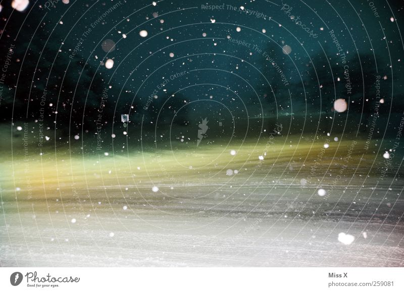 Winter fairy tale II Bad weather Ice Frost Snow Snowfall Street Crossroads Cold Snowflake Point Winter mood Slippery surface Smoothness Colour photo