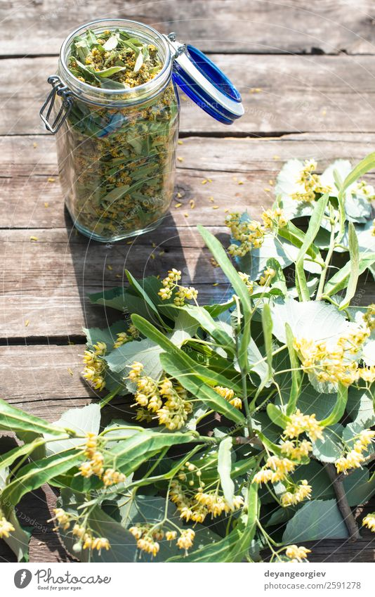 Jar with Linden blossom on wooden table Herbs and spices Tea Summer Nature Plant Tree Flower Leaf Blossom Fresh Natural Green linden lime branch herbal Floral