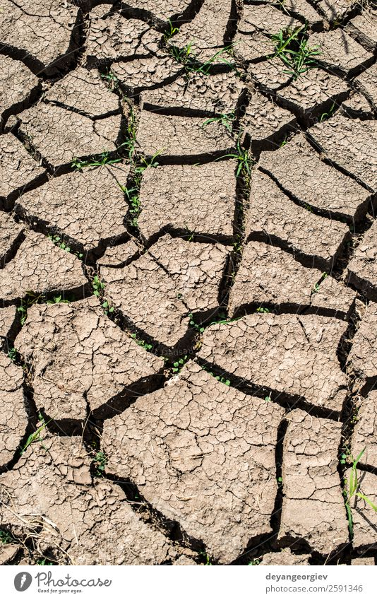 Cracked soil background Environment Nature Earth Climate Drought Dirty Hot Natural Brown Crack & Rip & Tear dry Consistency Ground desert Mud land arid Clay