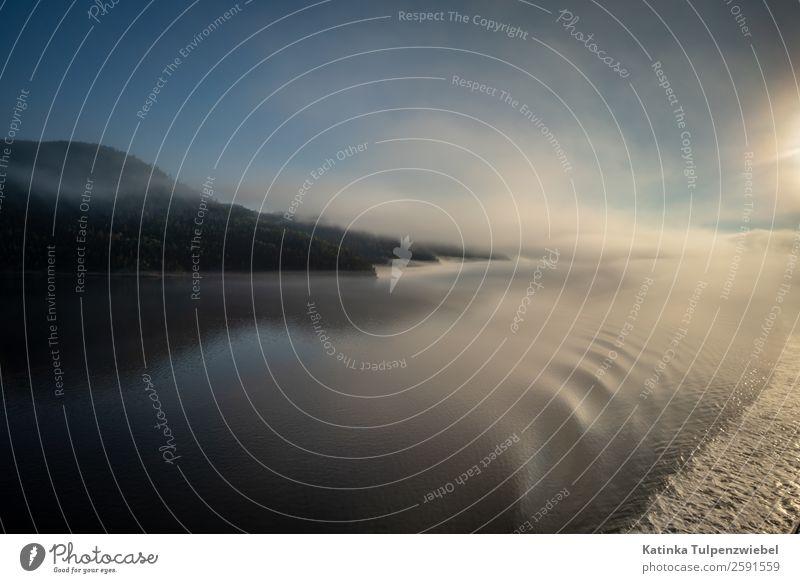 Morgenstimmung mit Blick auf die Berge im Saguenay Fjord Vacation & Travel Tourism Trip Adventure Sightseeing Cruise Expedition Waves Mountain Water Clouds