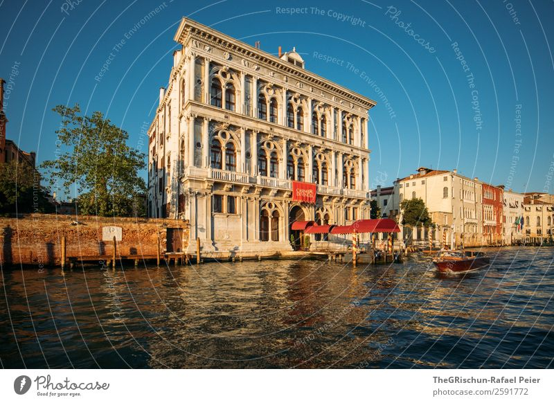 Venice Small Town Port City Blue Yellow Gold Red Water Italy House (Residential Structure) Watercraft Navigation Tree Channel Colour photo Exterior shot