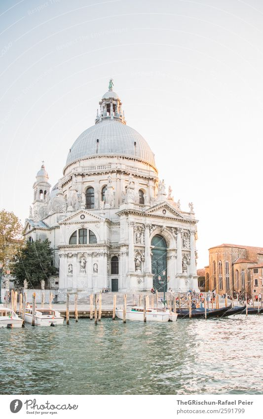 cathedral Small Town Port City Dome Gray Silver White Domed roof Statue Water Detail Art Sunset Venice Italy Watercraft Navigation Exterior shot Copy Space top