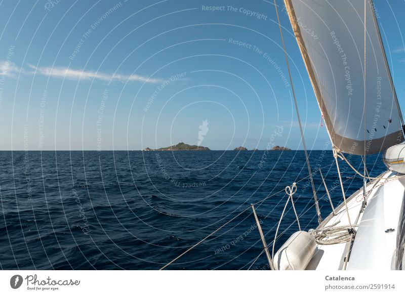 Vacation & Travel Summer Blue Water White Ocean Relaxation Joy Sports Brown Horizon Waves Island Joie de vivre (Vitality) Beautiful weather Summer vacation