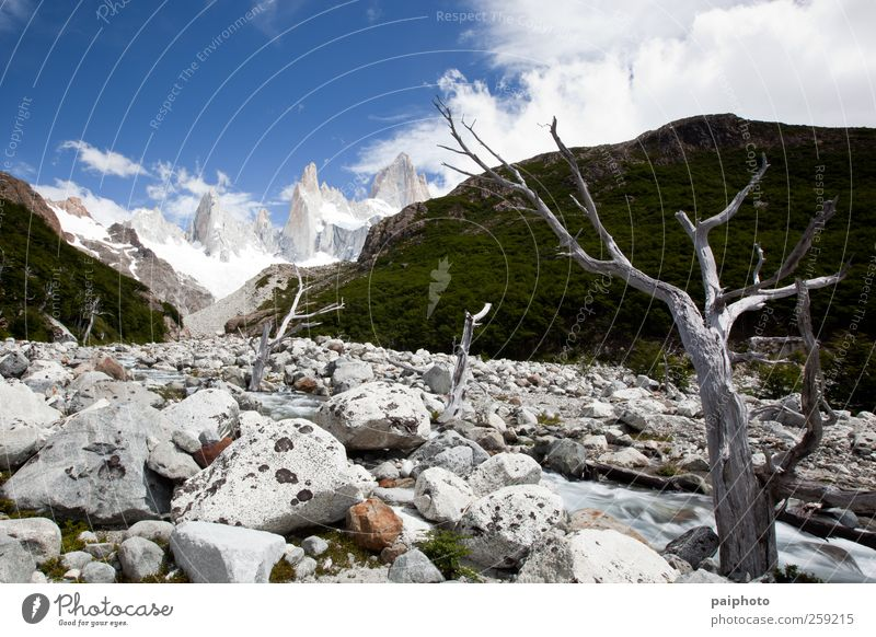 Tree, stream and mountains Sky Nature Vacation & Travel Plant Water Summer Landscape Clouds Far-off places Environment Mountain Snow Natural Freedom Weather Ice