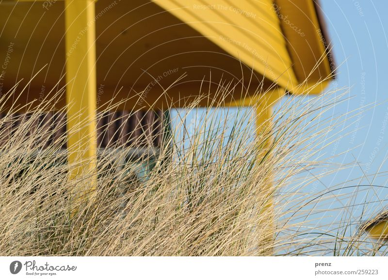 island life Architecture Plant Sky Village House (Residential Structure) Hut Manmade structures Building Facade Wood Blue Yellow Grass Marram grass Dune Gable