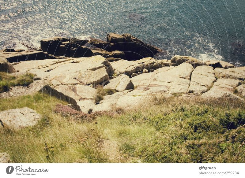 Nature Blue Water Plant Summer Ocean Meadow Environment Landscape Grass Coast Stone Waves Earth Rock Tall