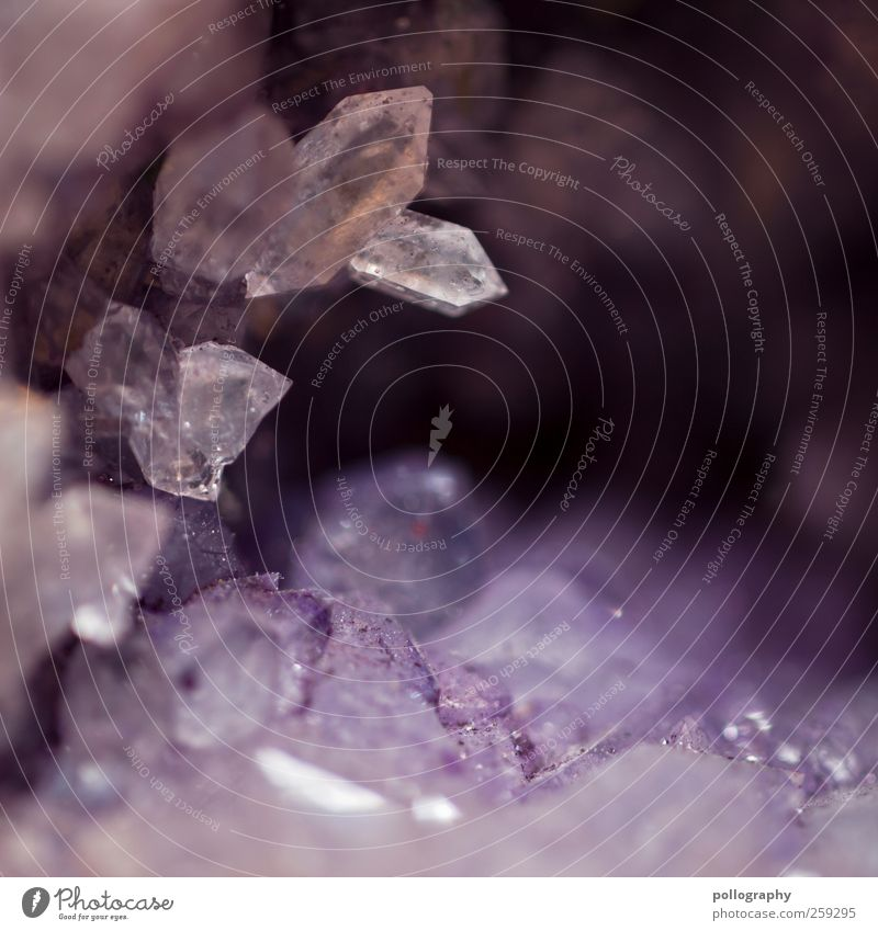 crystallized Nature Dirty Sharp-edged Far-off places Small Crystal Crystal structure Glittering Fraud Colour Violet Quartz Stone Minerals Point druse Inclusion