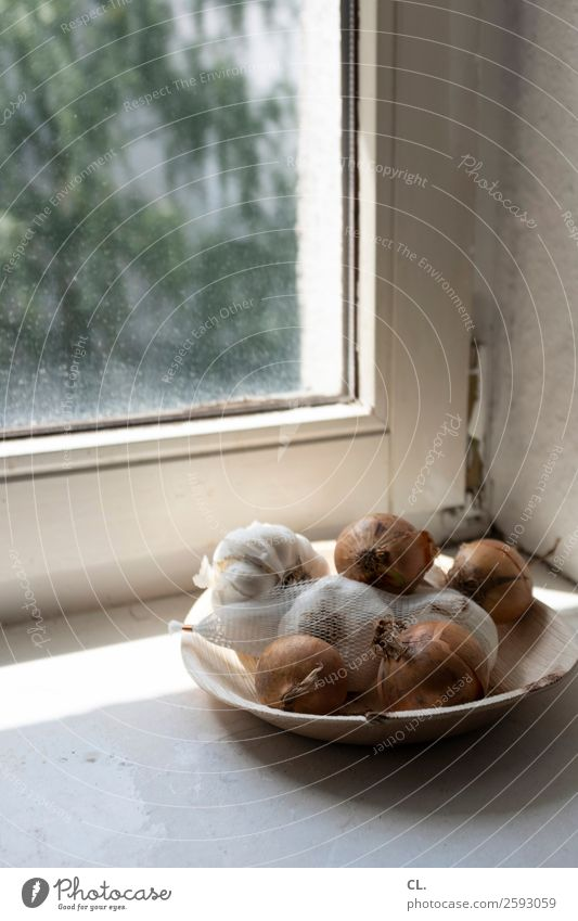 Window Food Living or residing Flat (apartment) Nutrition Simple Vegetable Bowl Plate Photos of everyday life Onion Window board Normal Garlic