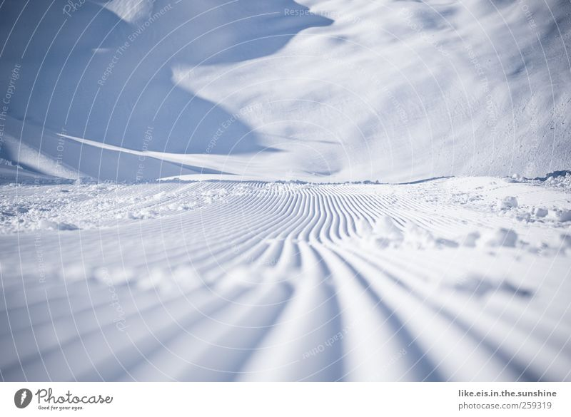 buttery Winter Snow Winter vacation Ski run Ice Frost Hill Alps Mountain Glacier Cold Blue Pure Innsbruck Piste magic Snowmobile Furrow Undulation Untouched