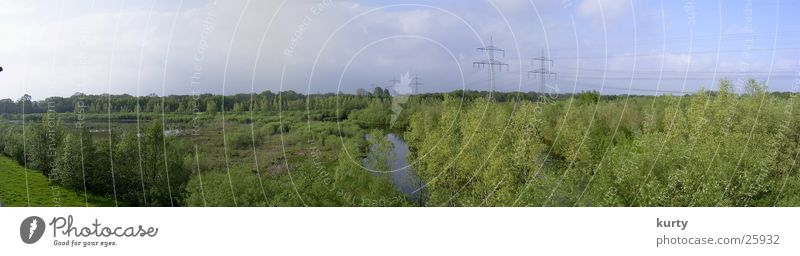 Tree Forest Lake Landscape Large Electricity pylon Pond Panorama (Format)
