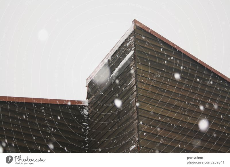 Snowfall in winter. Snowflakes and house facade with wood panelling Winter Bad weather House (Residential Structure) Roof chill Gloomy Pitch of the roof