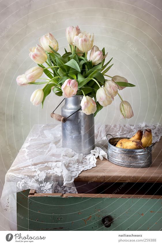 Still life with tulips Food Fruit Pear Nutrition Milk churn Art Work of art Plant Flower Tulip Leaf Blossom Bowl Table Lace Wood Metal Blossoming Lie Esthetic