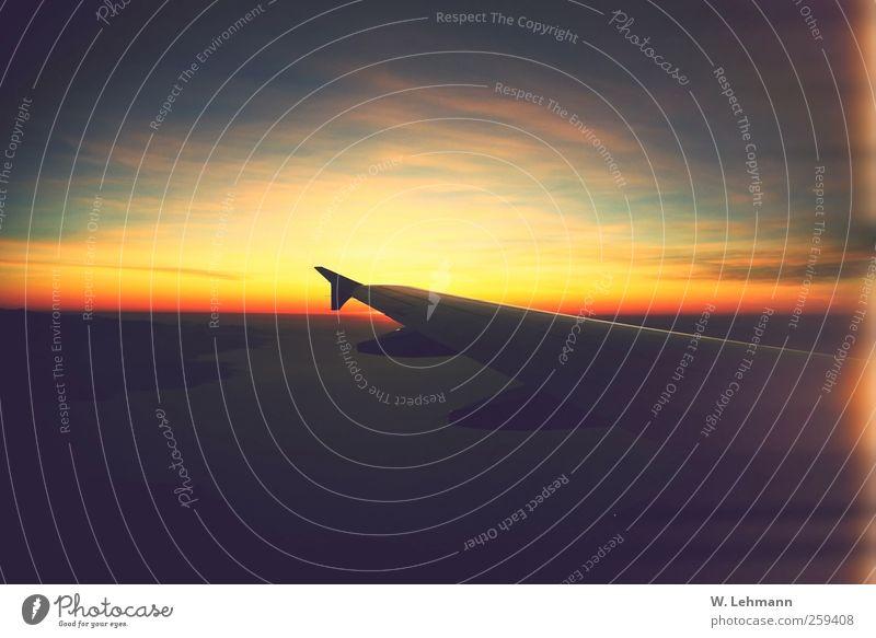 No title Aviation Vacation & Travel Pilot Altimeter Airplane Perspective Colour photo Exterior shot Experimental Deserted Twilight Long shot