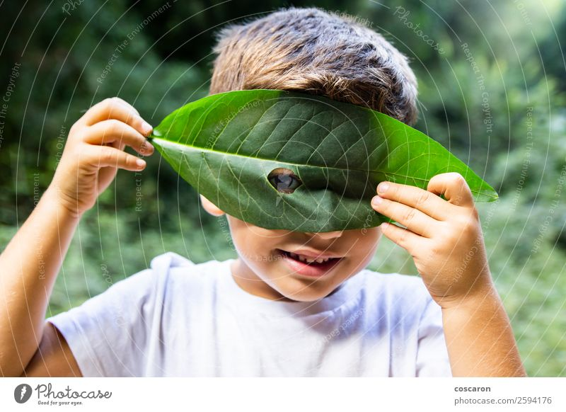 Little boy looking through a hole in a leaf Woman Child Human being Nature Plant Beautiful Green White Leaf Joy Forest Adults Autumn Happy Boy (child) Small