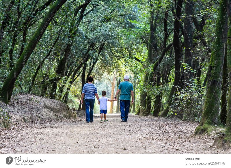 Retired couple walking their grandson on the path of a forest Happy Beautiful Leisure and hobbies Far-off places Child Human being Toddler Boy (child) Woman
