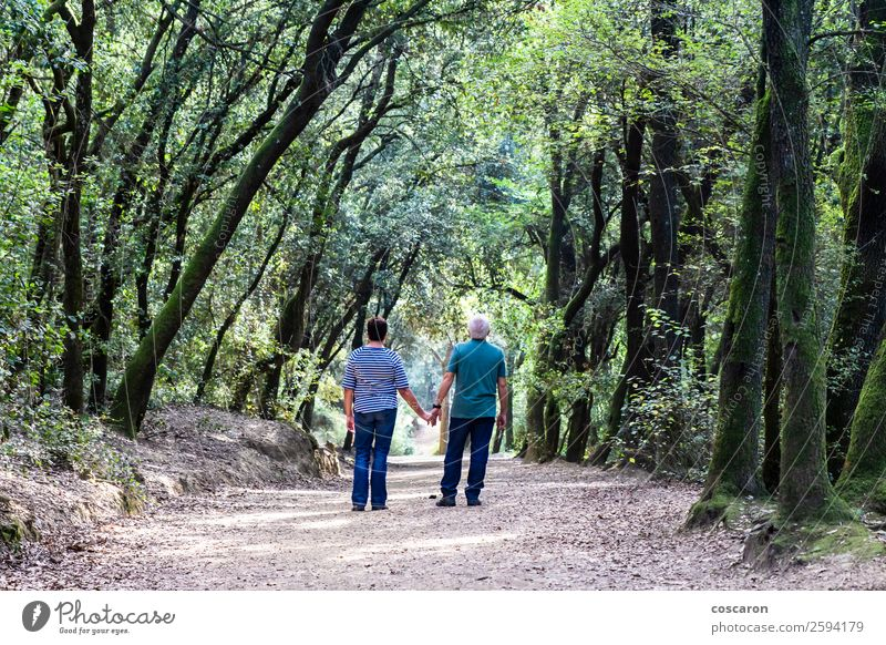 Retired couple walking together on the path of a forest Woman Human being Nature Man Old Beautiful Green Tree Relaxation Leaf Forest Far-off places Healthy