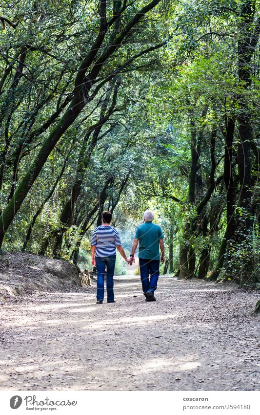 Retired couple walking together on the path of a forest Woman Human being Nature Man Old Summer Plant Beautiful Green Tree Relaxation Leaf Calm Forest