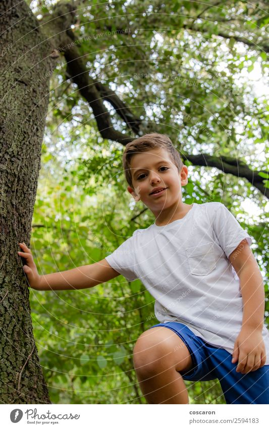 Cute child in the woods playing alone Lifestyle Joy Happy Beautiful Face Leisure and hobbies Playing Summer Garden Sports Child Human being Toddler Boy (child)