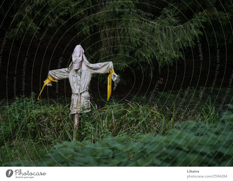 bird fright Garden Hallowe'en Agriculture Forestry Sculpture Nature Bad weather Scarecrow Exceptional Threat Dark Trashy Emotions Brave Protection Watchfulness