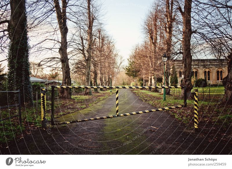 Sky Nature Tree Black Yellow Autumn Environment Lanes & trails Park Closed Stop Gate Discover Striped Avenue Bleak