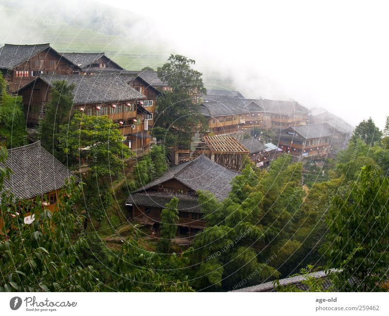 White Green Vacation & Travel Summer House (Residential Structure) Far-off places Landscape Gray Brown Adventure Living or residing Asia Village Discover Exotic