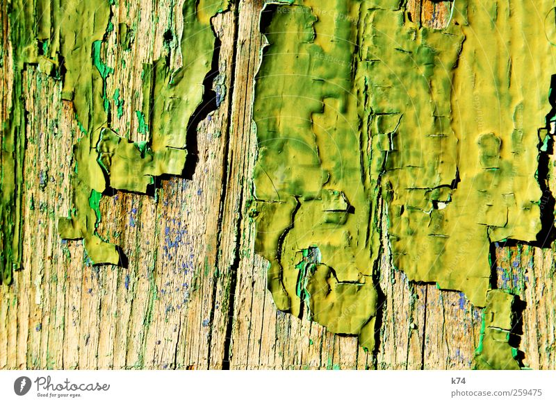 Old Green Yellow Wood Dye Background picture Change Transience Decline Flake off Human being